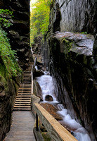 Inside the Flume Gorge
